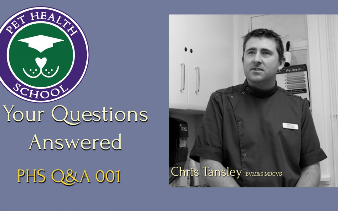 Q&A 001 with Chris