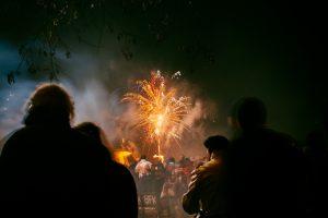 fireworks pet health school